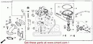 Honda Crf 50 Carburetor Diagram