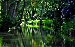 River Garden, HD Nature, 4k Wallpapers, Images ...