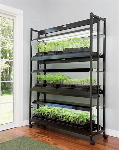 Grow Lights Led Tier Garden Stand Plant