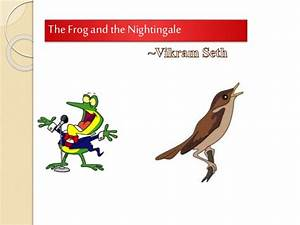 Frog and nightingale by satish rao