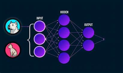 Neural Networks Learning Machine Backpropagation Easy Network