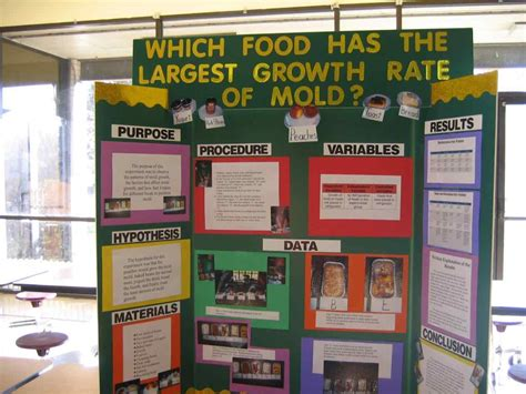 Science Fair Display Board High School Wondererme