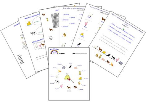 Expand Your French : Animals - Basic French Worksheets
