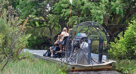 Airboat Alligator Tour by Gator Park Airboat Tours Miami All Around Things To Do