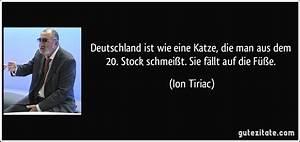 Wie Fange Ich Eine Katze : deutschland ist wie eine katze die man aus dem 20 stock ~ Markanthonyermac.com Haus und Dekorationen