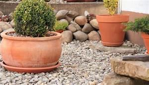 Mit Steinen Gestalten : steingarten anlegen gestalten ideen bilder beispiele ~ Sanjose-hotels-ca.com Haus und Dekorationen