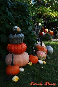 Heirloom Pumpkins For A Global Halloween
