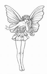 Garden Fairy Pencil Drawings Coroflot Coloring Sketch Mikesell Nicholas Wind Fairies Drawing Sketches Pages Easy Line Chimes Flags Adult Simple sketch template