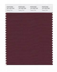 BUY Pantone Smart Swatch 19-1725 Tawny Port