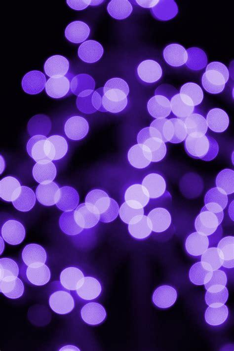 purple christmas lights picture free photograph photos