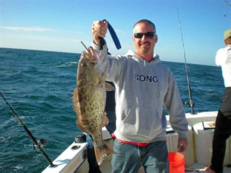 tampa grouper bay catching