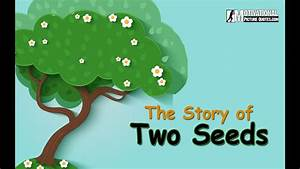 Motivational Short Story Of Two Seeds Best Inspirational