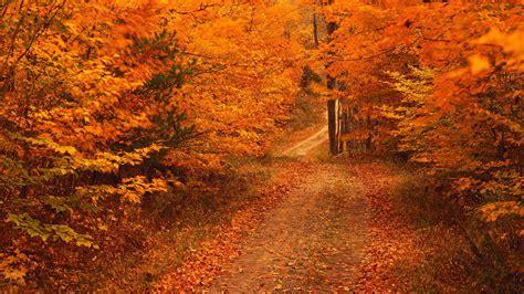 Free Early Fall Desktop Wallpapers