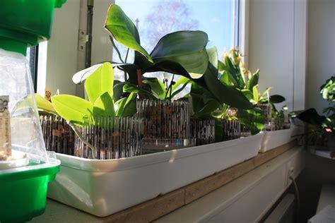 Len Für Fensterbank mit fensterbankschalen gegen zu niedrige luftfeuchtigkeit