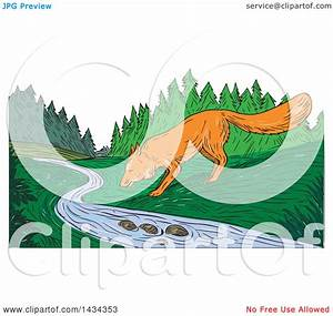 Clipart Of A Sketched Fox Drinking From A Creek