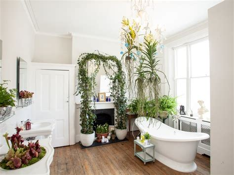 houseplants  thrive   bathroom  joy  plants
