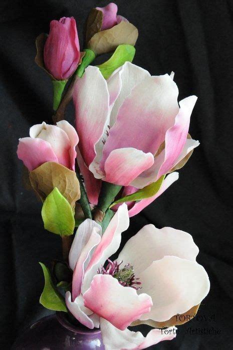 Magnolia flower Gardening in 2019 Flowers Most