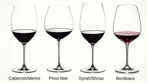 The Beginner Guide To Different Types Of Wine Glasses
