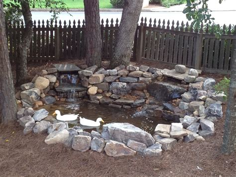 Clean Backyard Pond - what to use for a duck pond and how to keep it clean