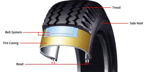 Learn The Parts Of The Tire And How