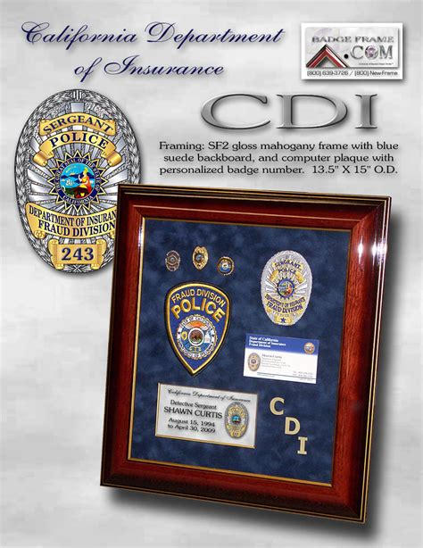 california department  insurance framed projects