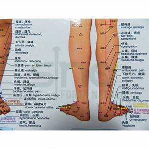 Foot And Lower Leg Map For Acupuncture  Meridans And Massage  Code H10