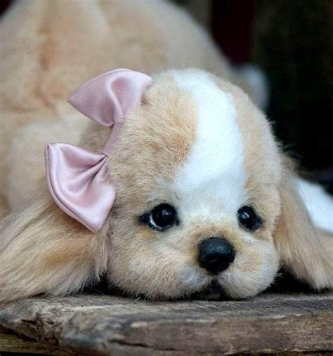 Too Cute Puppies Bring The Love Cute Animals Pinterest