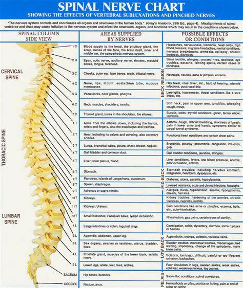 posture effecting  nerves  yoga