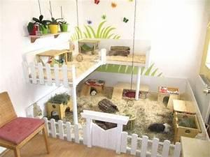 Maison Pour Lapin : fabriquer une maison pour hamster et souris ~ Premium-room.com Idées de Décoration