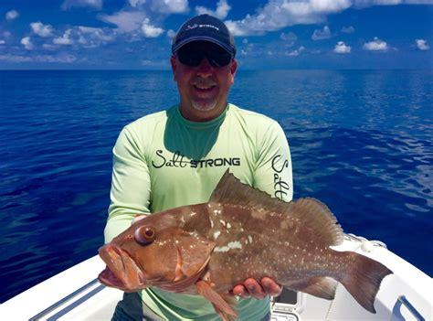 grouper cook recipes way amazing ten could saltstrong