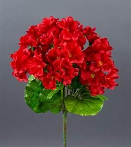 Orchideen Ohne Topf : geranie 26cm rot ohne topf zf k nstliche blumen kunstpflanzen kunstblumen ebay ~ Eleganceandgraceweddings.com Haus und Dekorationen