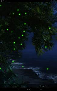 Firefly Forest HD Live Wallpaper Free