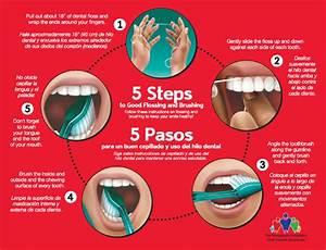 The Dental Treasure Chest  U2013 If You Seek You Will Find Gems