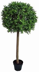 Boule De Buis : arbre boule de buis 120cm ~ Melissatoandfro.com Idées de Décoration