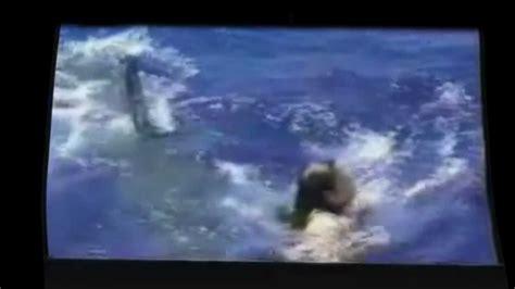 shark attack real footage shark attack caught  tape