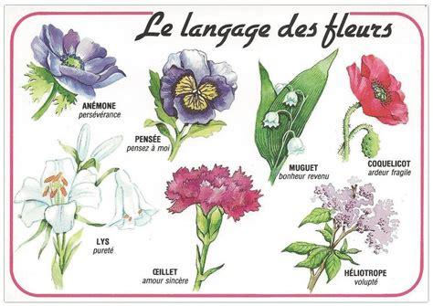 Héraldie Le Langage Des Fleurs