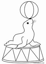 Circus Coloring Pages Seal Printable sketch template