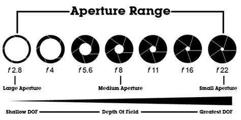 exposure triangle subratachak
