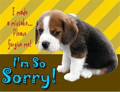 Sorry Puppy Im Sad Cards Card Gifs