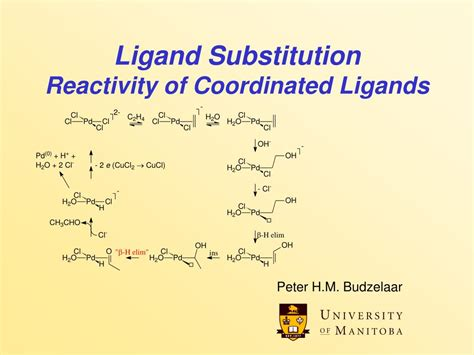 PPT - Ligand Substitution Reactivity of Coordinated ...
