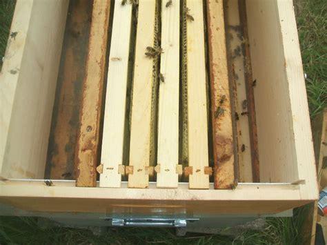 la pose des hausses ma methode histoires d abeilles