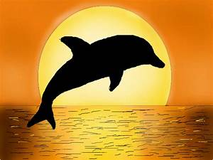 Jumping Bottlenose Dolphin Drawing