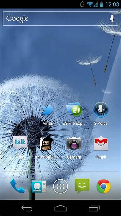 Samsung Wallpapers Galaxy Android Phone Apk Dandelion