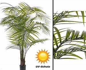 Künstliche Palmen Für Draußen : sonstige kunstpflanzen und weitere zimmer kunstpflanzen g nstig online kaufen bei m bel ~ Frokenaadalensverden.com Haus und Dekorationen