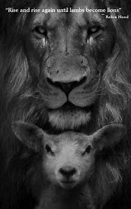 Best Lion And Lamb Ideas And Images On Bing Find What You Ll Love