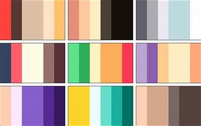 Palettes Colors Cats Deviantart Fur K612 Angry