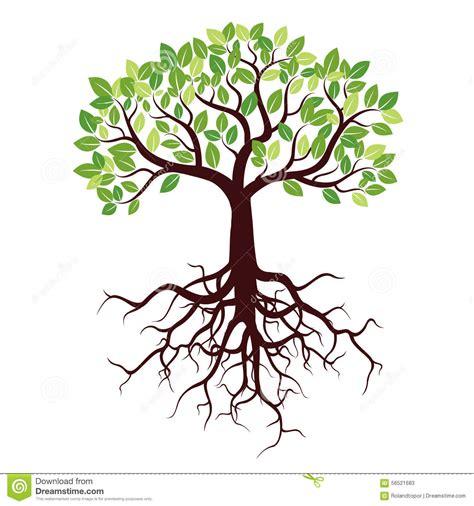 baum mit herzblättern baum mit wurzeln und bl 228 ttern stock abbildung illustration dekorativ form 56521683