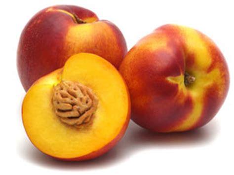 recherche recettes de cuisine nectarine