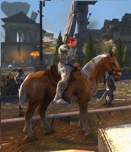 Pictures of Neverwinter Horses - #catfactsblog