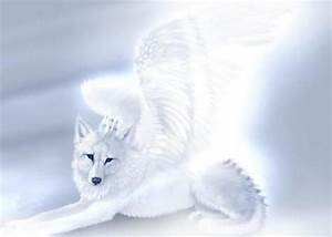 60 best images about wolves with wings on Pinterest ...